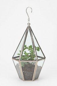 DIY Terrarium: Capturing Spring