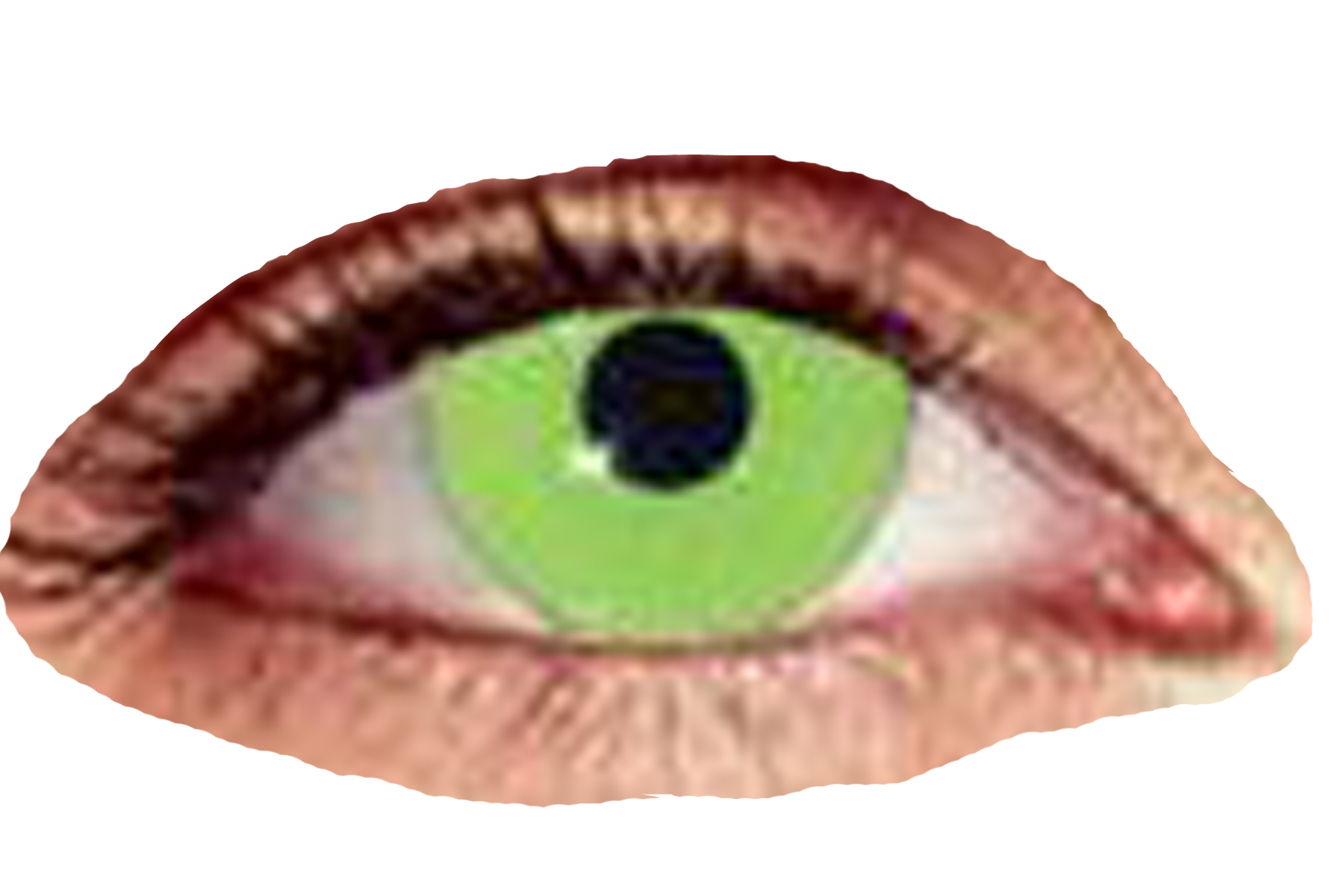 zombie-green-contact-lenses-lg